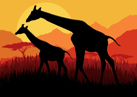tall grass: Giraffe family silhouettes in Africa wild nature mountain landscape background illustration vector Illustration