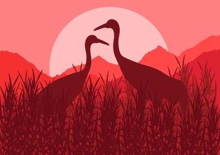Romantic crane couple in wild nature landscape illustration Stock Vector - 12045311