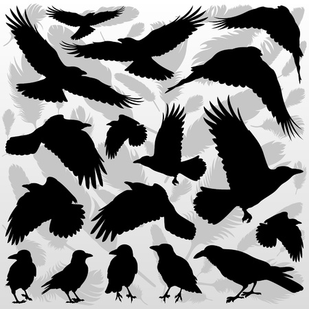 까마귀: 까마귀 깃털 그림 컬렉션 배경 벡터 실루엣