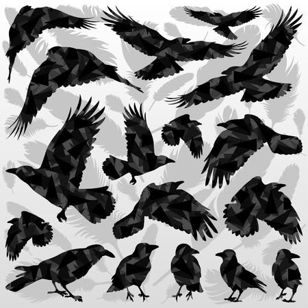 Crow and feathers silhouettes illustration collection background vector Vector