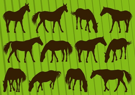 Horses silhouette collection vector Vector