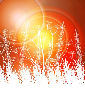 Red abstract light background vector with white grass Stock Vector - 12931376