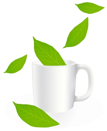 Fresh, green tea leaves on a white background with cup vector Stock Vector - 12931405