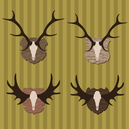 head shots: Deer and moose horns hunting trophy illustration collection background vector