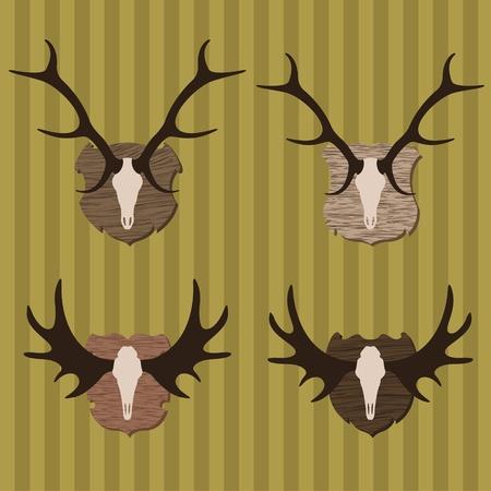 alces alces: El venado y la caza del alce el trofeo cuernos ilustraci�n vectorial de fondo la colecci�n Vectores