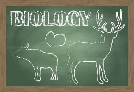 Biology blackboard vector background Vector
