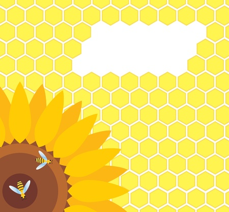 Bee on sunflower and honeycomb background Vector
