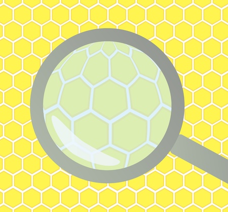 wax glossy: Honeycomb under magnifying glass background for poster