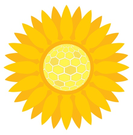 Sunflower with honeycombs background concept for poster Vector