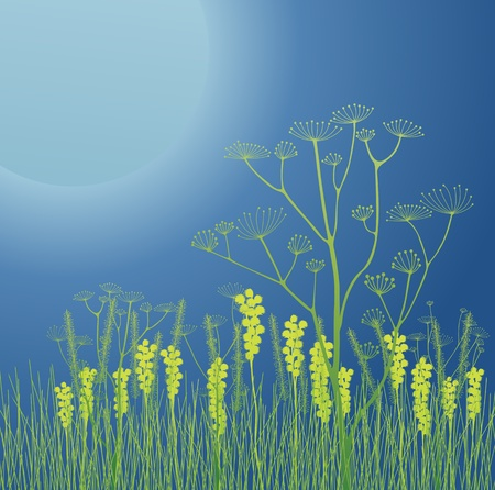 Huge moon with grass and flowers background for poster Stock Vector - 13412704