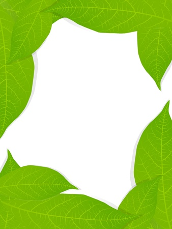 Green leaves background for poster Stock Vector - 13444884