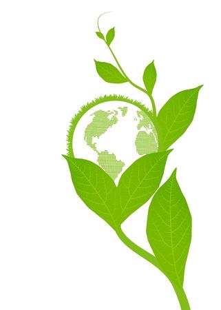 medio ambiente: Hojas verdes de fondo para el cartel Vectores