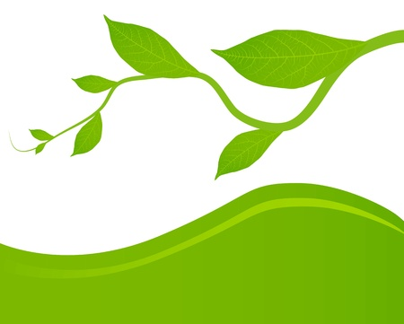Green leaves background for poster Stock Vector - 13412712