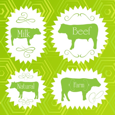 Beef cattle ecology food labels illustration collection background Vector