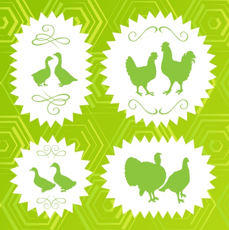 Ecology farm chicken, goose, duck and turkey egg and meat labels illustration collection background Vector