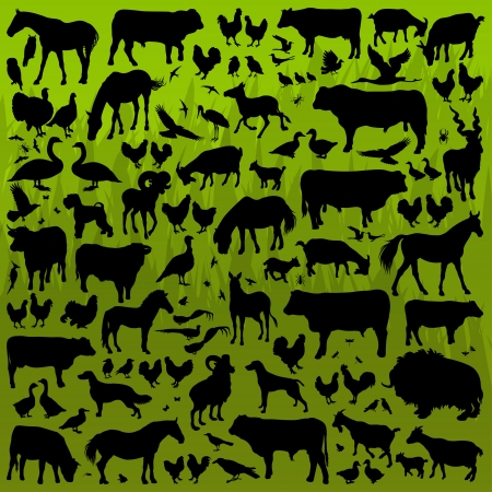 Farm animals detailed silhouettes illustration collection background vector Stock Vector - 13820894