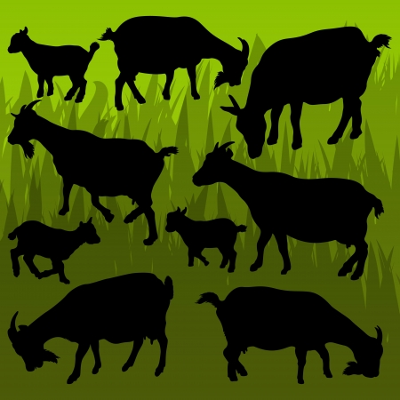Farm dairy goats detailed silhouettes illustration collection background vector Stock Vector - 13820916