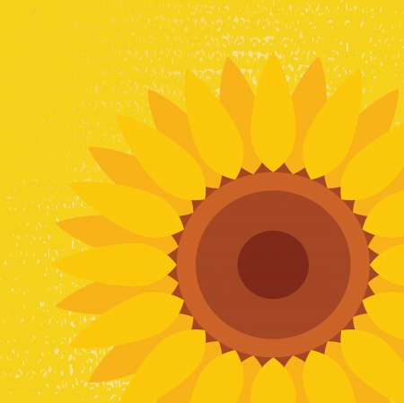 Sunflower vector abstract background Vector