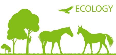 thoroughbred horse: Ecolog�a Caballo de vectores de fondo concepto de paisaje para el cartel Vectores