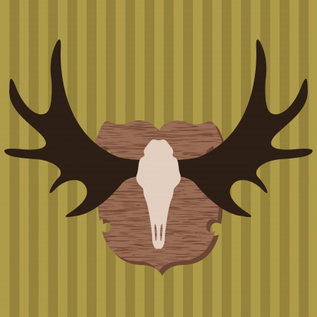 taxidermy: Moose head horns hunting trophy illustration background vector for poster