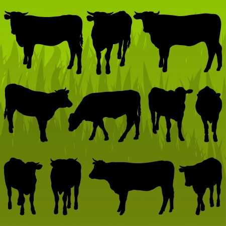 Beef cattle detailed silhouettes illustration collection background vector Vector