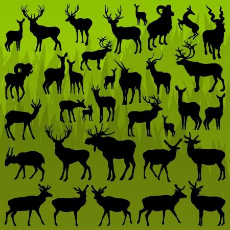 alces alces: Ciervos, alces y ovejas de la monta�a de caza cuernos de trofeos animales ilustraci�n vectorial de fondo la colecci�n Vectores