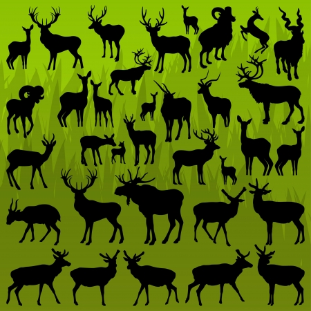 old rifle: Deer, moose and mountain sheep horned hunting trophy animals illustration collection background vector Illustration