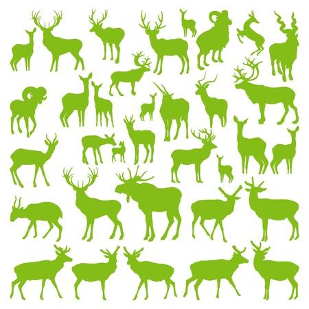 venado: Ciervos colecci�n de siluetas de la ecolog�a de vectores de fondo