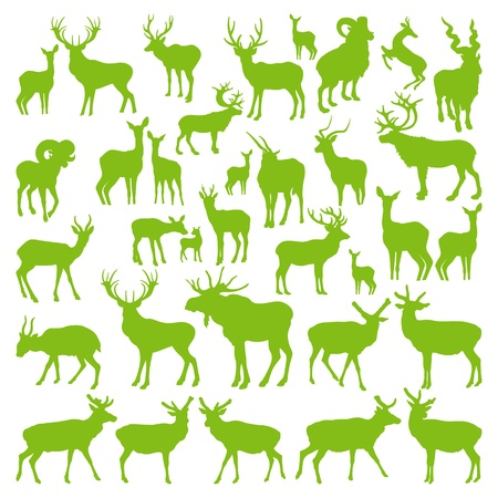 stag: Deers collection silhouettes ecology background vector