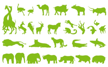 Africa animals illustration collection background vector set for poster Vector