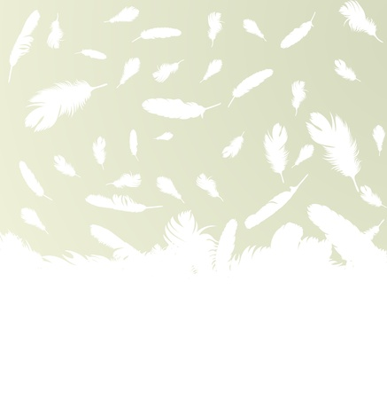 Feather vector background with copy space for text Vector