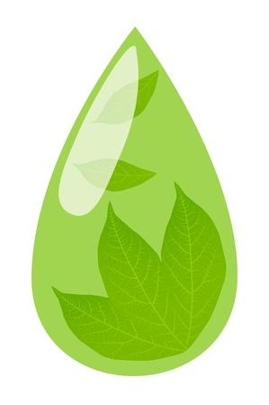 chinese tea cup: El t� verde y la ca�da de hojas verdes y frescas en su interior el concepto de vectores de fondo Vectores