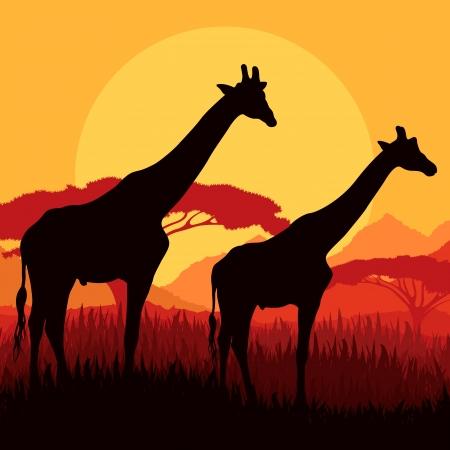 Giraffe familie silhouetten in Afrika wilde natuur, berg, landschap achtergrond illustratie vector