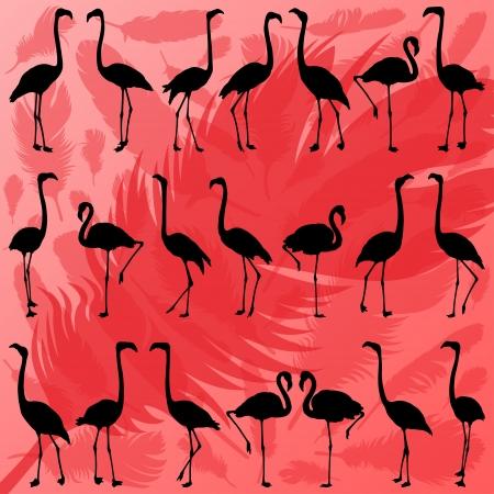 flamenco ave: Colorida ave flamenco y plumas siluetas ilustraci�n vectorial de fondo colecci�n