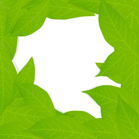 Green leaves background vector for poster Stock Vector - 15272131