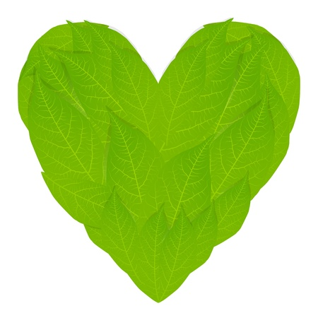 Ecology concept with heart of green leaves Stock Vector - 15272130
