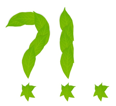 environmental awareness: Question mark made of leaves vector background concept Illustration