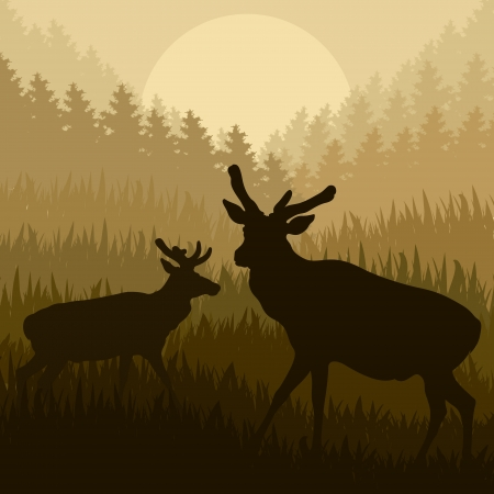 Deer in wild nature forest landscape background illustration vector Stock Vector - 15272114