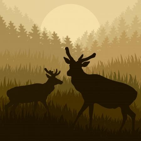 Deer in wild nature forest landscape background illustration vector Stock Vector - 15272114