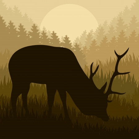 Deer in wild nature forest landscape background illustration vector Vector