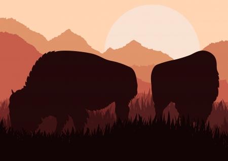 plains indian: Bison family in wild America nature landscape background illustration vector