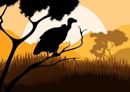 Vulture bird hunting in wild nature landscape background illustration vector Vector
