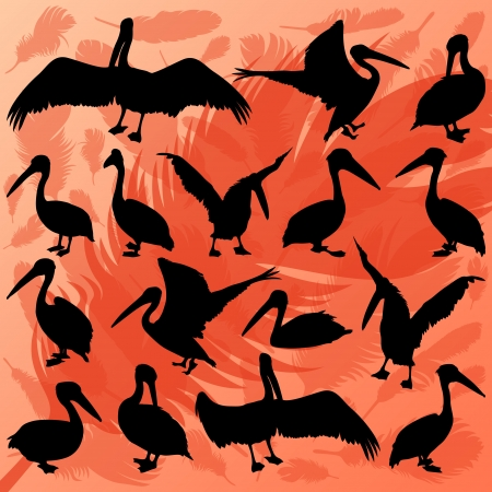 sunsets: Pelican bird detailed wildlife silhouettes illustration collection background vector Illustration