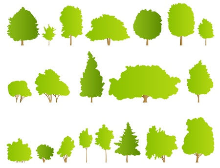 Trees detailed illustration collection background vector Stock Vector - 15795087