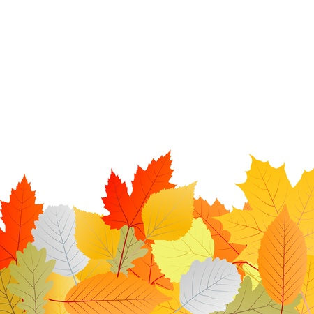 Leaves autumn vector background for poster Stock Vector - 15795142