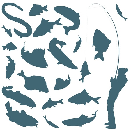 Fisherman and fishes vector background for poster Vector