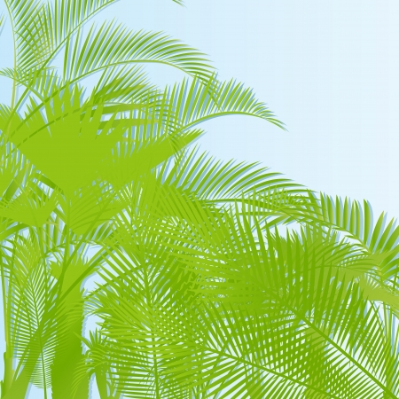 Tropical leaf rain forest background vector Vector