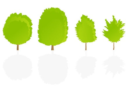 Trees detailed illustration collection background vector Stock Vector - 15794993