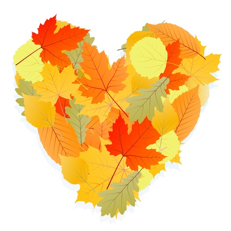 heart shaped leaves: Autumn leaves heart background vector concept Illustration