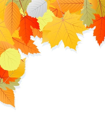 Leaves autumn vector background for poster Stock Vector - 15795279